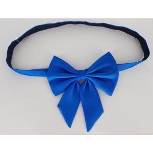 Sinine tüdruku kikilips